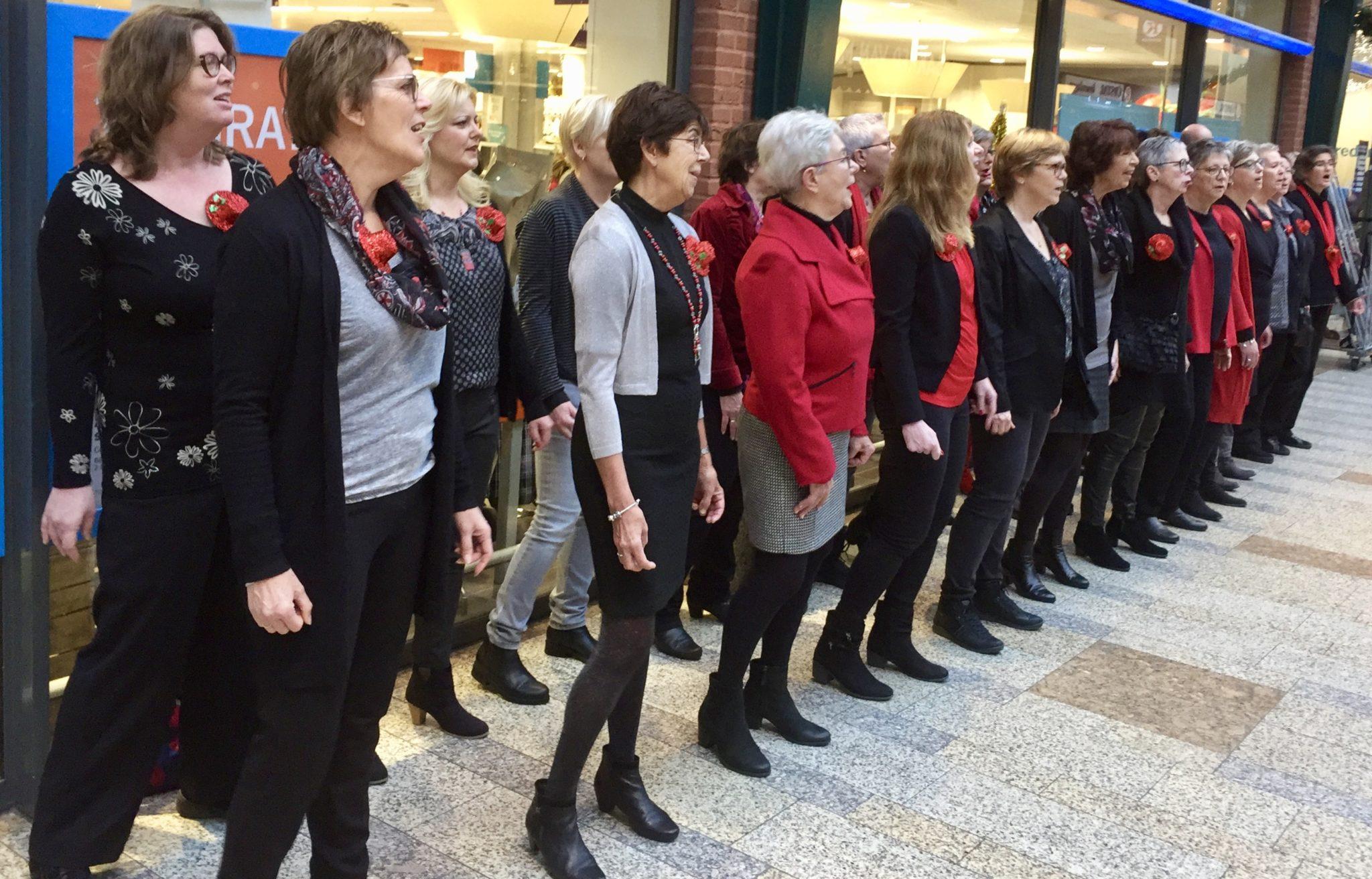 A-Capella (flashmob) in Ackershof Pijnacker